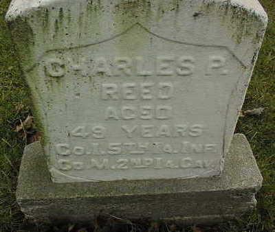 REED, CHARLES P. - Linn County, Iowa | CHARLES P. REED