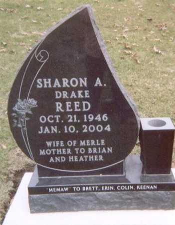 REED, SHARON A. - Linn County, Iowa | SHARON A. REED