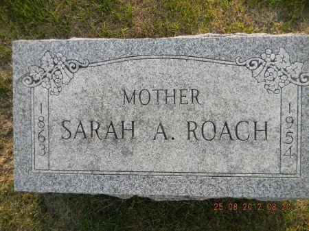 ROACH, SARAH A. - Linn County, Iowa | SARAH A. ROACH