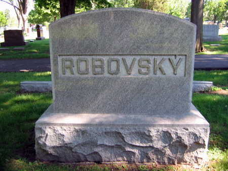 ROBOVSKY, FAMILY STONE - Linn County, Iowa | FAMILY STONE ROBOVSKY