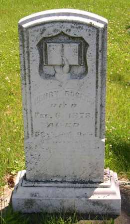 ROGERS, HENRY - Linn County, Iowa | HENRY ROGERS