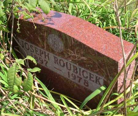 ROUBICEK, JOSEPH - Linn County, Iowa | JOSEPH ROUBICEK
