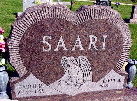 SAARI, KAREN M. - Linn County, Iowa | KAREN M. SAARI