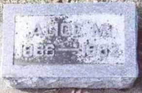 SARGEANT, ALICE M. - Linn County, Iowa   ALICE M. SARGEANT