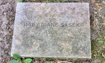 SASEK, DIANE - Linn County, Iowa | DIANE SASEK