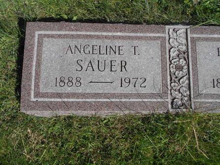 SAUER, ANGELINE T. - Linn County, Iowa | ANGELINE T. SAUER
