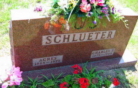 SCHLVETER, CHARLES L. - Linn County, Iowa | CHARLES L. SCHLVETER