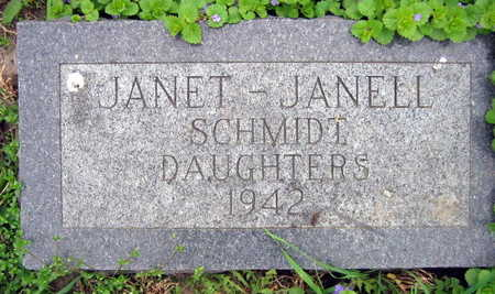 SCHMIDT, JANELL - Linn County, Iowa | JANELL SCHMIDT