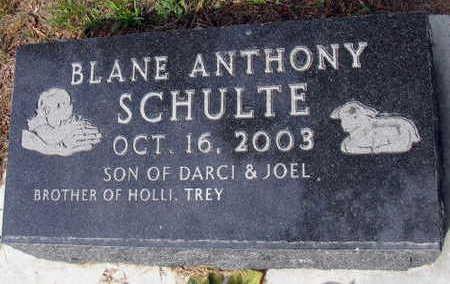 SCHULTE, BLANE ANTHONY - Linn County, Iowa | BLANE ANTHONY SCHULTE