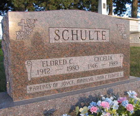 SCHULTE, CECELIA - Linn County, Iowa   CECELIA SCHULTE