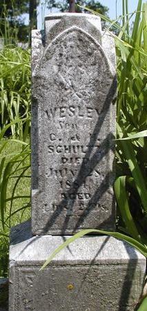SCHULTZ, WESLEY - Linn County, Iowa   WESLEY SCHULTZ