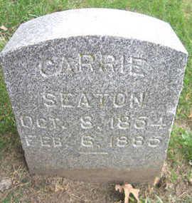 SEATON, CARRIE - Linn County, Iowa | CARRIE SEATON