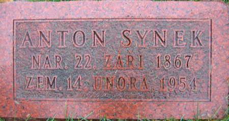 SYNEK, ANTON - Linn County, Iowa | ANTON SYNEK
