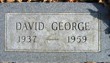 SEEBER, DAVID GEORGE - Linn County, Iowa | DAVID GEORGE SEEBER