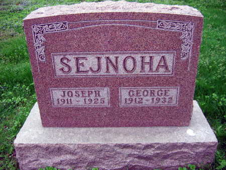 SEJNOHA, GEORGE - Linn County, Iowa | GEORGE SEJNOHA