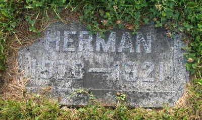 SELZER, HERMAN - Linn County, Iowa | HERMAN SELZER