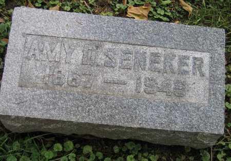 SENEKER, AMY D. - Linn County, Iowa   AMY D. SENEKER