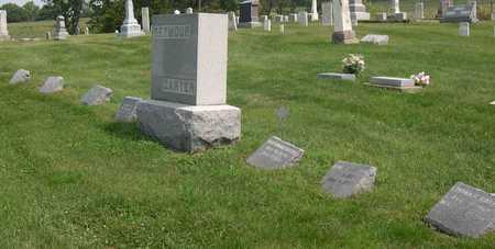 SEYMOUR CARTER, FAMILY STONE - Linn County, Iowa | FAMILY STONE SEYMOUR CARTER