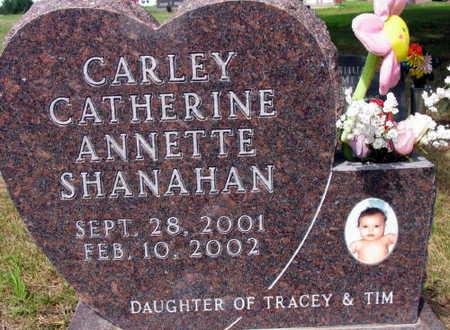 SHANAHAN, CARLEY CATHERINE ANNETTE - Linn County, Iowa | CARLEY CATHERINE ANNETTE SHANAHAN