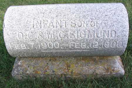 SIGMUND, INFANT SON - Linn County, Iowa | INFANT SON SIGMUND