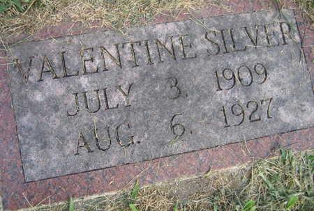 SILVER, VALENTINE - Linn County, Iowa | VALENTINE SILVER