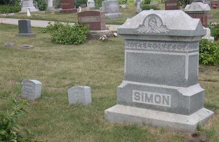 SIMON, FAMILY STONE - Linn County, Iowa | FAMILY STONE SIMON