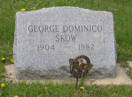 SKOW, GEORGE DOMINICO - Linn County, Iowa   GEORGE DOMINICO SKOW