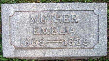 SKVOR, EMELIA - Linn County, Iowa | EMELIA SKVOR