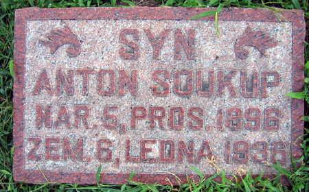 SOUKUP, ANTON - Linn County, Iowa | ANTON SOUKUP