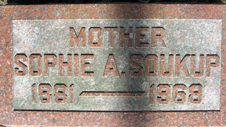 SOUKUP, SOPHIE - Linn County, Iowa | SOPHIE SOUKUP
