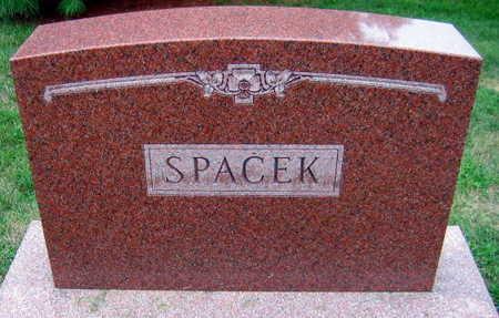 SPACEK, FAMILY STONE - Linn County, Iowa | FAMILY STONE SPACEK