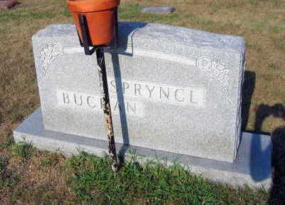 SPRYNCL BUCHAN, FAMILY STONE - Linn County, Iowa | FAMILY STONE SPRYNCL BUCHAN