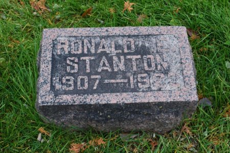 STANTON, RONALD E. - Linn County, Iowa   RONALD E. STANTON