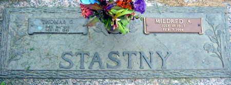 STASTNY, THOMAS C. - Linn County, Iowa | THOMAS C. STASTNY