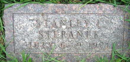 STEPANEK, STANLEY L. - Linn County, Iowa   STANLEY L. STEPANEK