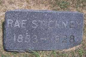 STICKNEY, RAE - Linn County, Iowa   RAE STICKNEY