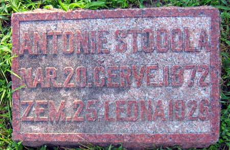 STODOLA, ANTONIE - Linn County, Iowa | ANTONIE STODOLA