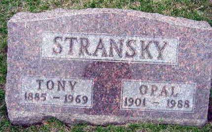 STRANSKY, TONY - Linn County, Iowa | TONY STRANSKY