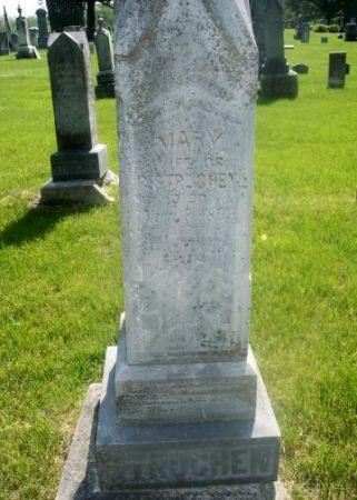 LAUBSCHER STRUCHEN, MARY - Linn County, Iowa | MARY LAUBSCHER STRUCHEN