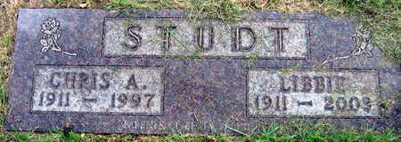 STUDT, CHRIS A. - Linn County, Iowa | CHRIS A. STUDT