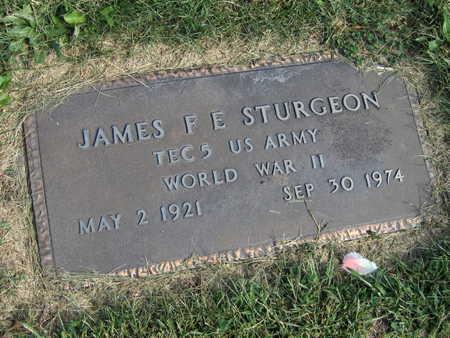STURGEON, JAMES F. E. - Linn County, Iowa | JAMES F. E. STURGEON