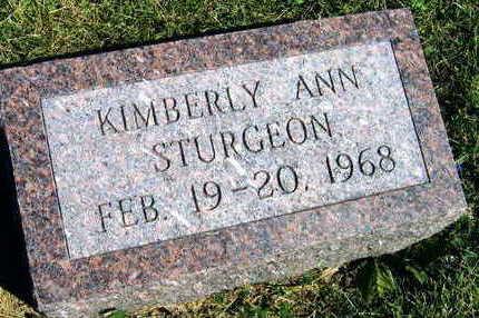 STURGEON, KIMBERLY ANN - Linn County, Iowa   KIMBERLY ANN STURGEON