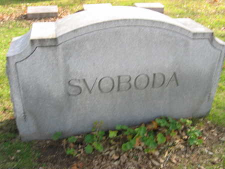 SVOBODA, FAMILY STONE - Linn County, Iowa | FAMILY STONE SVOBODA