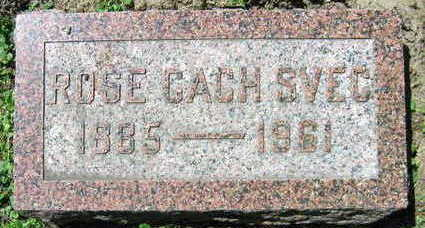 CACH SVEC, ROSE - Linn County, Iowa | ROSE CACH SVEC