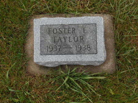 TAYLOR, FOREST E.   (FOSTER EDISON) - Linn County, Iowa | FOREST E.   (FOSTER EDISON) TAYLOR