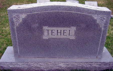 TEHEL, FAMILY STONE   (TEHEL NOVOTNY) - Linn County, Iowa | FAMILY STONE   (TEHEL NOVOTNY) TEHEL