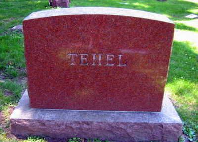 TEHEL, FAMILY STONE   (TEHEL PITLAK) - Linn County, Iowa | FAMILY STONE   (TEHEL PITLAK) TEHEL