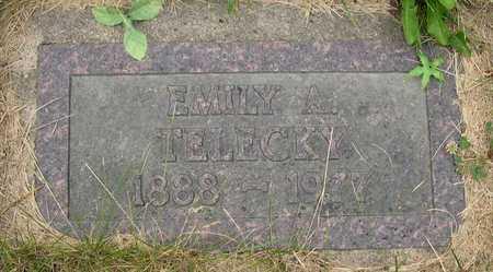 TELECKY, EMILY A. - Linn County, Iowa | EMILY A. TELECKY