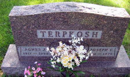 TERPKOSH, AGNES J. - Linn County, Iowa   AGNES J. TERPKOSH