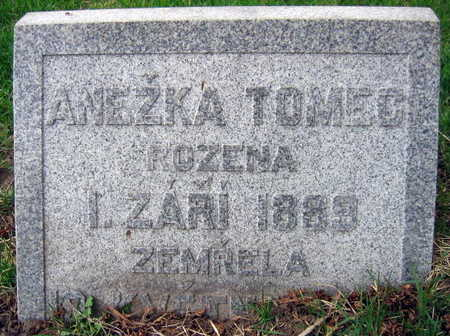 TOMEC, ANEZKA - Linn County, Iowa | ANEZKA TOMEC